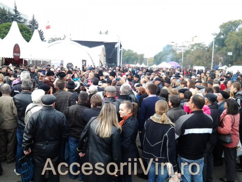 Ziua Nationala a Vinului Chisinau - octombrie 2013